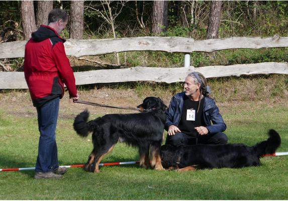 Mensch-und-Hund-Harmonie