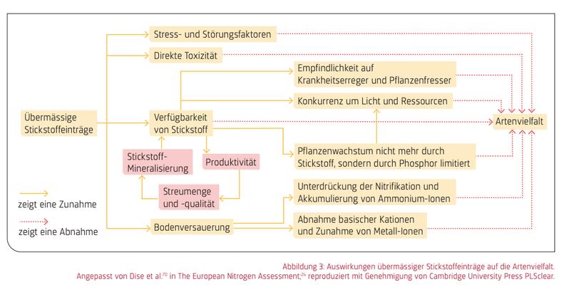 """Quelle: Swiss Academies,  2020, """"Übermässige N- & P-Einträge schädigen Biodiversität, Wald & Gewässer"""""""