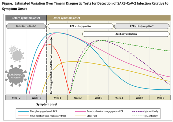 JAMA Network, May 2020, Interpreting Diagnostic Tests for SARS-CoV-2