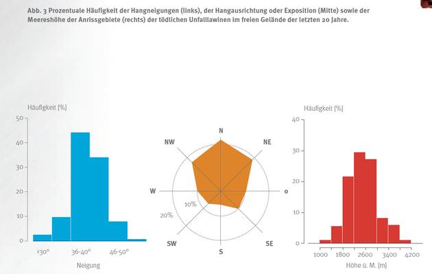 Jürg Schweizer & Frank Techel, Lawinenunfälle Schweizer Alpen, Zahlen & Fakten der letzten 20 Jahre, Bergundsteigen 2017
