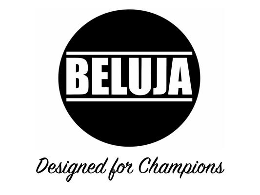 Beluja vorgestellt auf Startup Willi