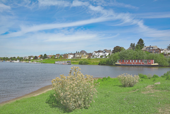 Rheinauen in Köln Flittard