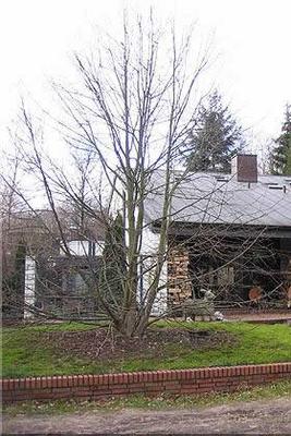 Dach in Kupfer - Stehfalztechnik