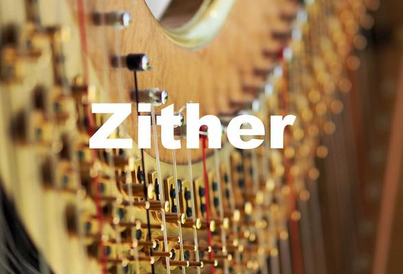 Zitherunterricht Instrumentalunterricht Okatyev