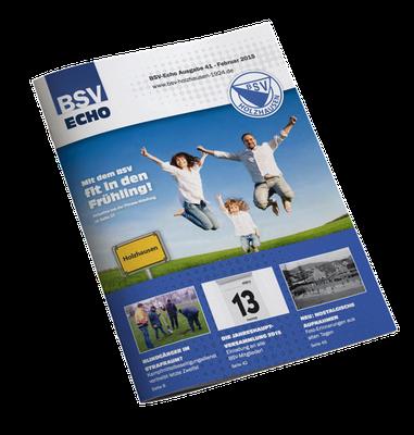 BSV Ausgabe 41