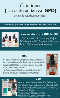 GPO Cannabis Öle Chiang Mai kaufen Thailand
