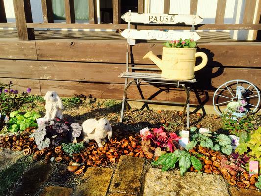 ウサギのいる庭 常緑のヒューケラとウサギのオーナメント