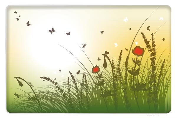 Wandbild Blumen und Schmetterlinge auf Sommer Wiese