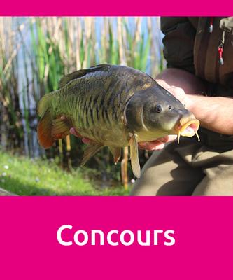 concours de pêche aux étangs de Laurielle