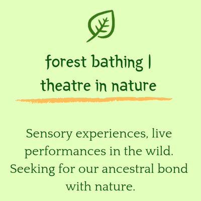 forest bathing and sensory experiences