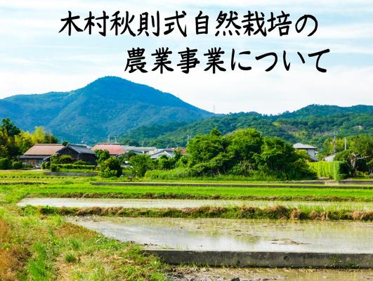 木村式自然栽培の農業について