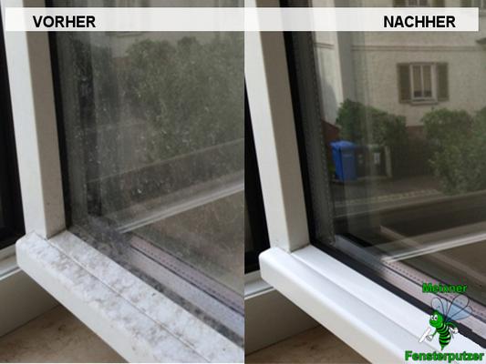 Meixner Fensterputzer Blütenstaub