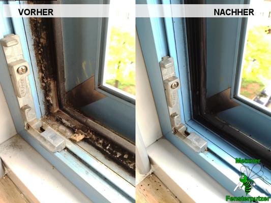Meixner Fensterputzer Schimmel Rahmen
