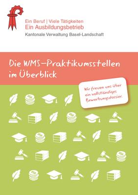 WMS Broschüre 2015, Praktikumsinformation