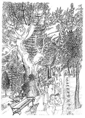Freudlich grüßen die Rabenkrähen - Zeichnung, 20x30cm, 2012, A. Kästner