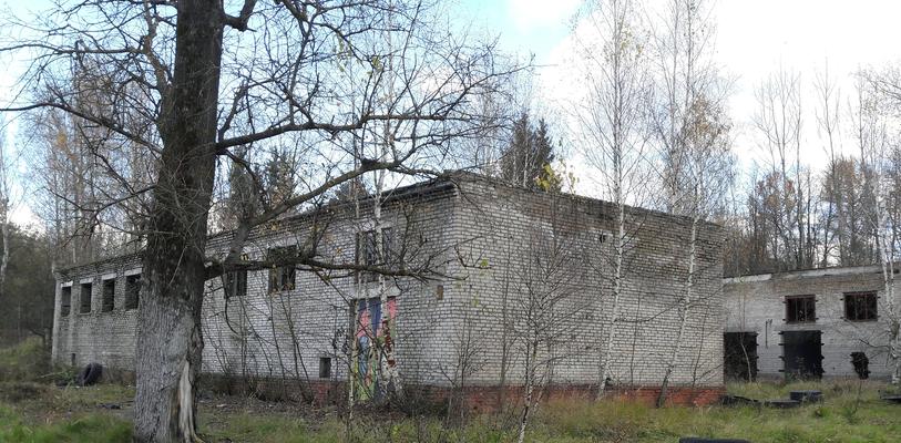 Продажа коммерческой недвижимости в Ликино-Дулево