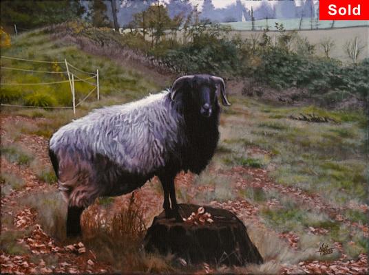 Heidschnucke am Hang, © 2018 Scott Holt, acrylic on canvas, 30x40cm/11.8x15.8in