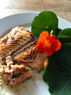 Gebratenes Lachsfilet auf Kapuzinersalat -