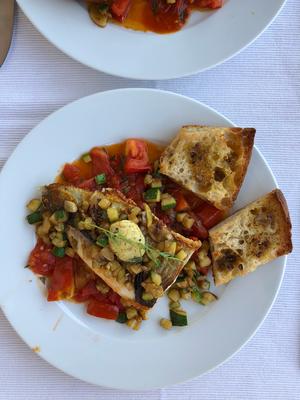 """Felchenfilets von meinem """"Privatfischerfreundschatz"""" gefischt - auf gebratenenZuchiniwürfeli und Tomatensauce. Eigentlich könnte man das ganze zusammen als Ratatouille kochen doch ich mag die Zuchinis lieber so."""
