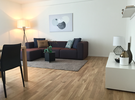 Model Apartment Zürich
