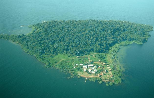 Luftaufnahme unserer Auffangstation Ngamba Island in Uganda. Hier haben Sie als Pate die Möglichkeit die Schimpansen zu besuchen.