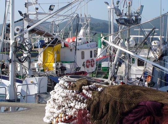 producto del mar cantabrico
