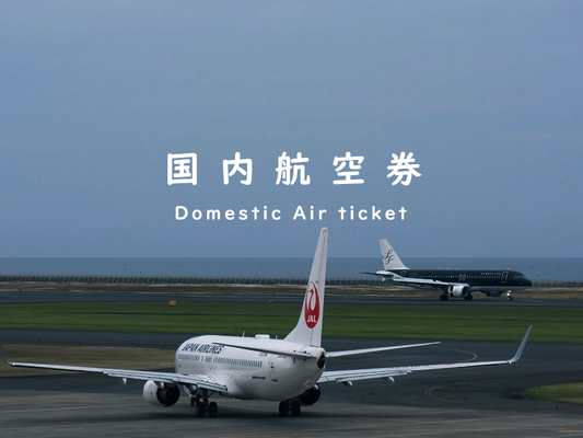 国内航空券