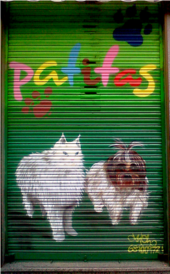 graffiti para veterinario