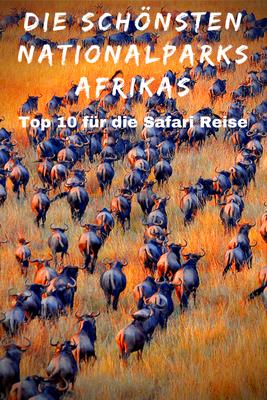 Big Five Afrika Leopard