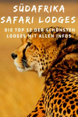 Afrika Safari Reise Blog