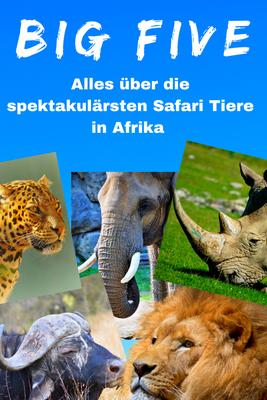 Amboseli Nationalpark Kenia