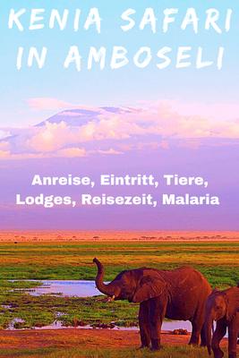 Kenia Safari Erfahrungen