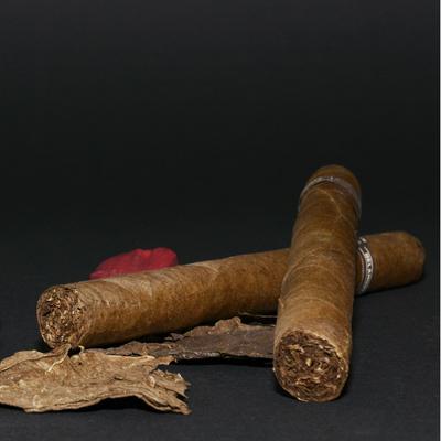 Havanna Reise Kuba Zigarren Zoll