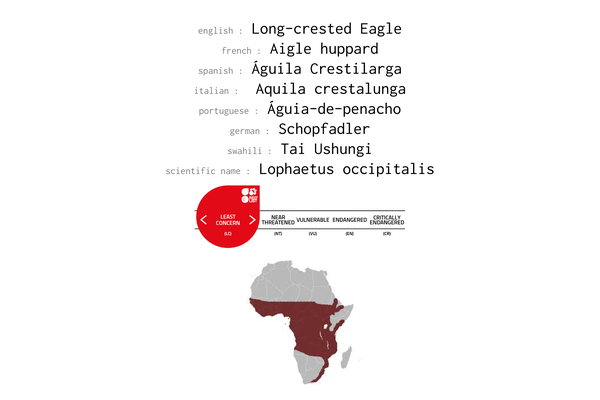 Names, conservation status and distribution