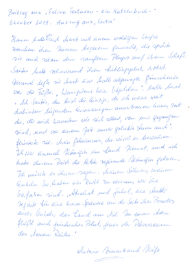 Irmentraud Kiefer, Saitis, Handschrift