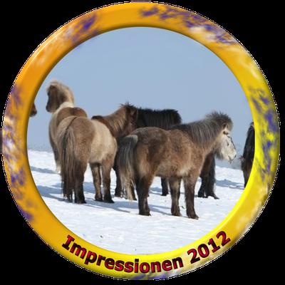 klick auf Impressionen 2012