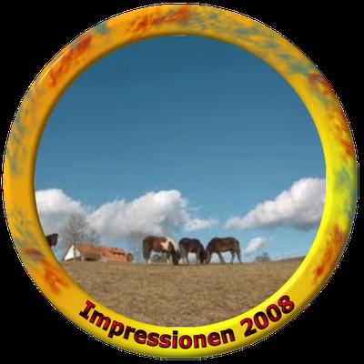 klick auf Impressionen 2008