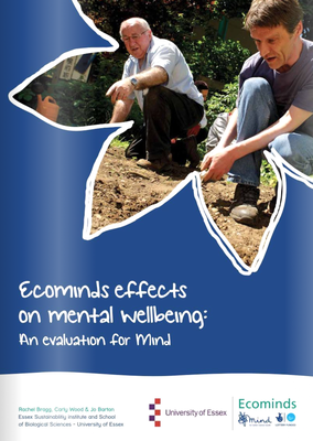 Ecominds effects on Mental Wellbeing