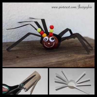 Araignée avec un rouleau papier WC et un marron. Le marron est collé sur le rouleau avec de la colle à bois. www.toutpetitrien.ch/bricos/ - fleurysylvie