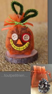 Bricolage citrouille Halloween avec une pive et un sachet tissu. www.toutpetitrien.ch/bricos/ - fleurysylvie