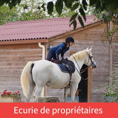 Ecurie les Rouillons, pension pour chevaux à Sens