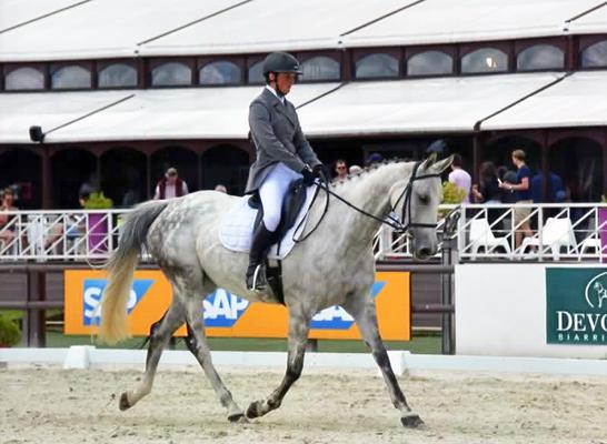 Dressage, valorisation du cheval de CCE avec Fanny Lelièvre, écurie les Rouillons, 89 Sens