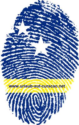 curacao-fingerprint-ferienhaus-karibik-pool