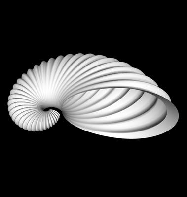 3D Argonauta