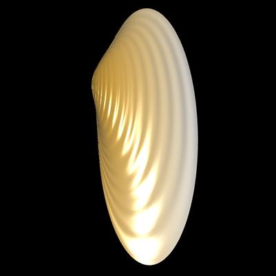 3D Lyonsia