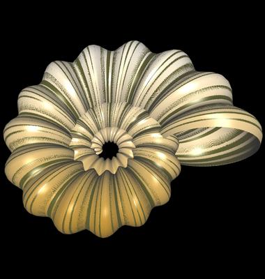3D Ammonit