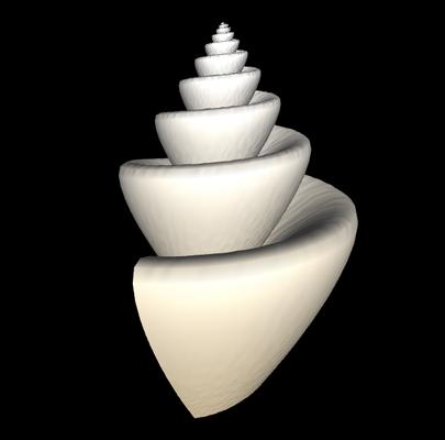 3D Neptunia tabulata