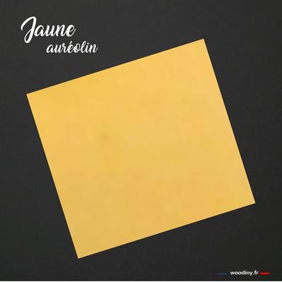 Pochette de costume jaune auréolin