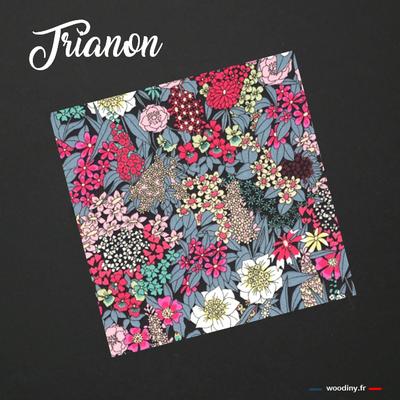Pochette de costume Trianon