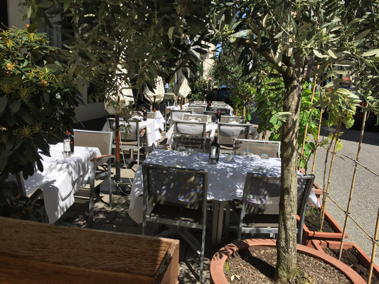 Terrasse mit Olivenbäumen
